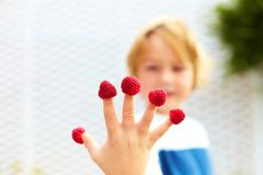 Happy kid holding the ripe and fresh raspberries on his fingers Stock Photography