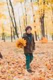 Happy kid boy walking in the Park . Autumn background. stock photo
