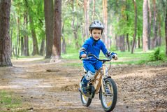 Happy kid boy of 4 years having fun in autumn or summer forest with a bicycle on beautiful fall  spring day. Active child making s Stock Photos