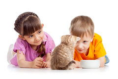 Happy kid feeding kitten Royalty Free Stock Photo