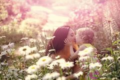 Happy kid having fun. Daughter kiss mother on sunny floral landscape. Woman and child on field with blossoming daisy flowers. Summer vacation, nature, beauty Stock Image