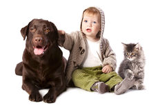Happy kid with his pets. A dog and a kitten Royalty Free Stock Photography