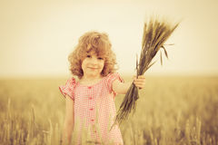 Happy kid holding wheat Royalty Free Stock Image