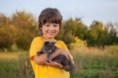 Happy kid with a kitten Royalty Free Stock Photography