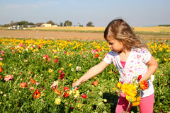 Happy kid looking at the field of summer flowers Royalty Free Stock Photography