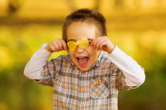 Happy kid playing with autumn leaves Royalty Free Stock Photos