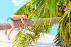 Happy kid relaxing on coconut palm on the beach Royalty Free Stock Photos