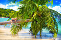 Happy kid relaxing on palm at tropical beach Stock Image