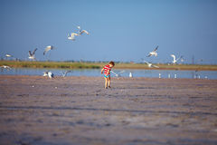 Happy kid running firth lake with seagulls Royalty Free Stock Photography