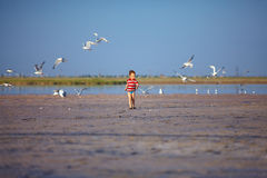 Happy kid running firth lake with seagulls Royalty Free Stock Image