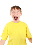 Happy Kid Royalty Free Stock Image