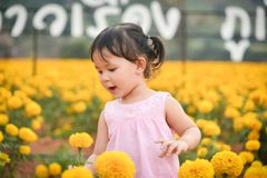 Happy kid with spring Marigold flowers yellow. Field little girl on flower garden stock photos