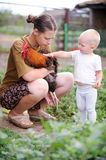 Happy kid stroking the chicken mom`s hands. The concept of tasty and healthy ecological food stock image