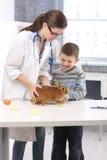 Happy kid at vet with rabbit. Feeding bunny food, carrot, lettuce, veterinary examining pet on table Stock Photos