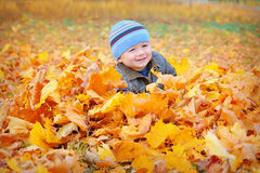 Happy kid in yellow autumn leaves in the park Royalty Free Stock Images