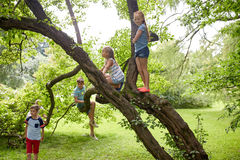 Happy kids climbing up tree in summer park Royalty Free Stock Photo