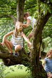Happy kids climbing up tree in summer park Stock Photo