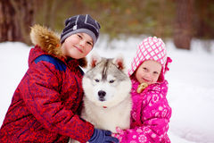 Happy kids embracing hasky dog in winter park Royalty Free Stock Photo