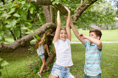 Happy kids hanging on tree in summer park Royalty Free Stock Image