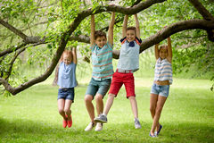 Happy kids hanging on tree in summer park Stock Image