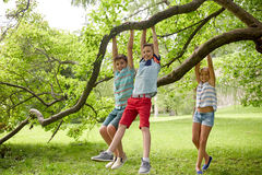 Happy kids hanging on tree in summer park Royalty Free Stock Photo