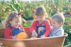 Happy kids sitting inside wheelbarrow at field pumpkin patch Stock Photo