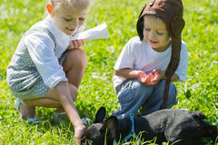 Happy kids playing with the dog, French bulldog Royalty Free Stock Images