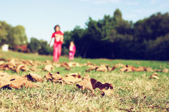 Happy kids running and playing in beautiful fall park. Autumn Landscape Stock Images