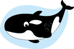 Happy Killer Whale. Illustration of Happy Killer Whale On Blue Water Stock Image