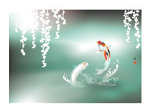 Happy Koi couple Stock Photo