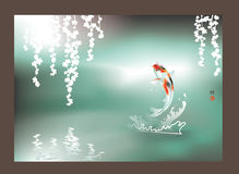 Happy Koi jumping Royalty Free Stock Images