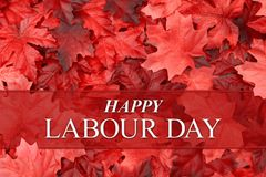 Happy Labour Day greeting with fall leaves. Happy Labour Day greeting with red fall leaves with Canadian and UK spelling royalty free stock photography
