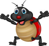 Happy ladybug cartoon Stock Photography