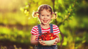 Happy laughing child girl with ripe strawberry in summer on natu Royalty Free Stock Photo