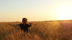 A happy laughing child runs to the camera. A little boy runs among the ripe ears of wheat. Background of the sunset stock video footage