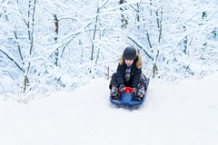 Happy laughing child sleigh ride in snowy winter park Royalty Free Stock Image