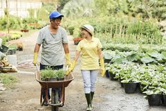 Cheerful gardeners with wheelbarrow stock photos