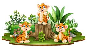 Happy leopard group with green plants vector illustration