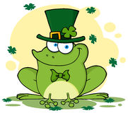 Happy leprechaun frog with background Stock Images