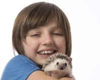 Happy litle girl with African pygmy hedgehog Royalty Free Stock Photo