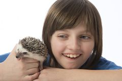 Happy litle girl with her pet African pygmy hedgehog royalty free stock images