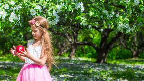 Happy little adorable girl in blossoming apple Stock Image