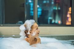Happy little baby boy sitting in bath tub in the evening before going to sleep on the background of a window overlooking. The evening city. Portrait of baby royalty free stock photo