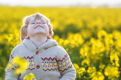 Happy little blond toddler boy lauging in yellow rape field on a Stock Image