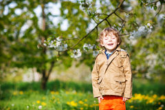 Happy little blond toddler boy in spring garden with blooming ap Stock Photos