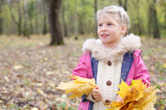 Happy little blonde girl holds yellow maple leafle Royalty Free Stock Photo