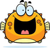 Happy Little Blowfish Royalty Free Stock Images