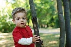 Happy little boy Stock Photo