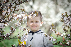 Happy little boy and blossom spring flowers Stock Photography