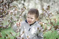 Happy little boy and blossom spring flowers Stock Photo